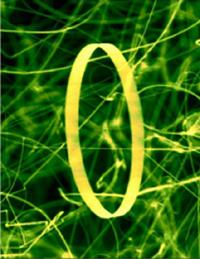 Zinc oxide nanoring