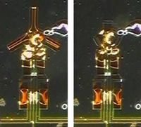 Grasping microrobot
